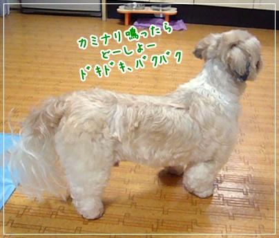 100618_takutaku_02.jpg