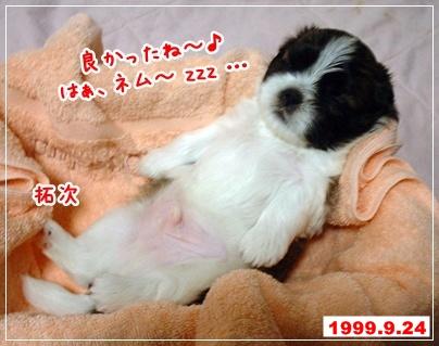 100625_nanataku_02a.jpg