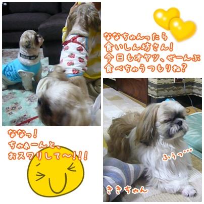 100711_kiki_mntj_02.jpg