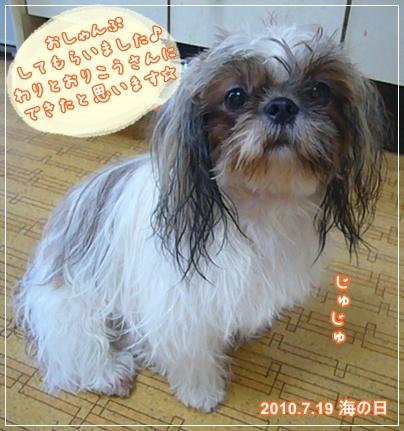 100719_juju_01.jpg