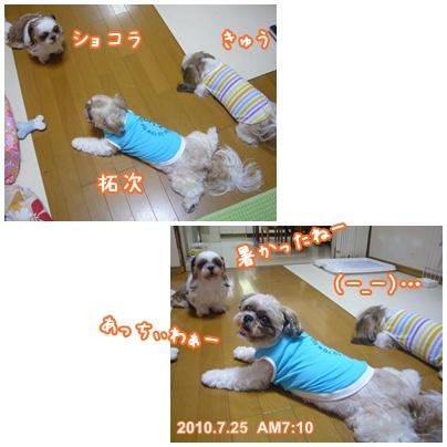 100725_tqc_01.jpg