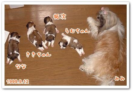 100831_nanataku_b_01.jpg