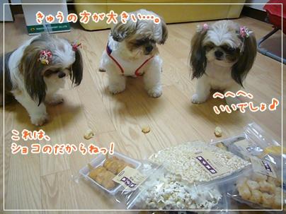 100831_otapre_04.jpg