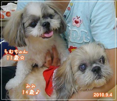100909_wans_05.jpg