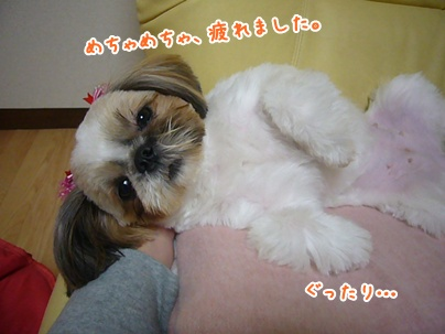 101113_juju_cut_02.jpg