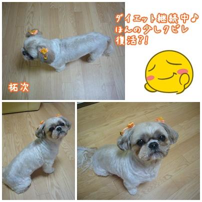101202_takuku_03.jpg