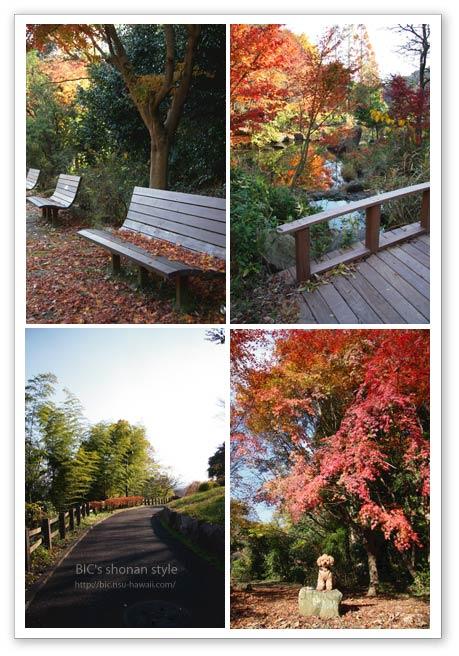 金沢自然公園