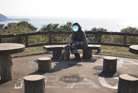 逗子,大崎公園