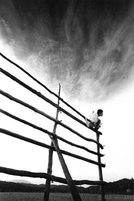細江英公『鎌鼬 作品8』(1965)