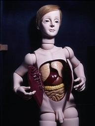 四谷シモンの球体関節人形