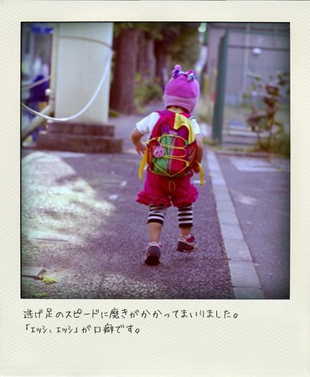 nigeashi.jpg