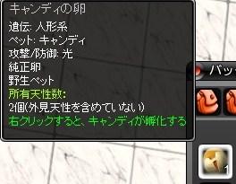 mwo_015キャンディ