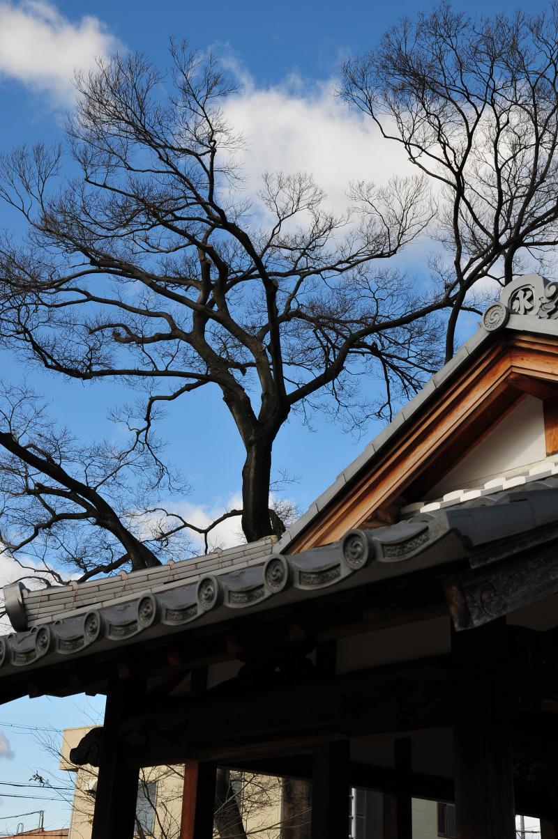 守山区の秋葉神社