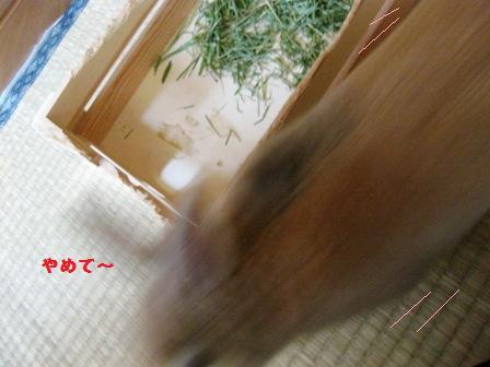 2010_0224_094027-IMG_3076.jpg