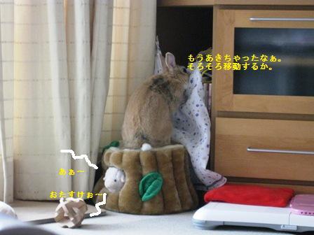2010_0321_131036-IMG_3811.jpg