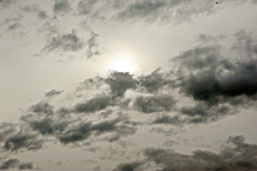 20100724-2.jpg