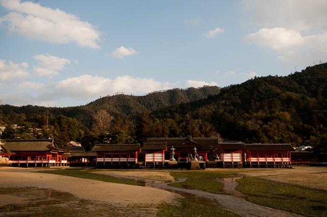 20110122-14.jpg