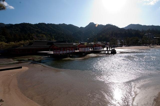 20110122-8.jpg