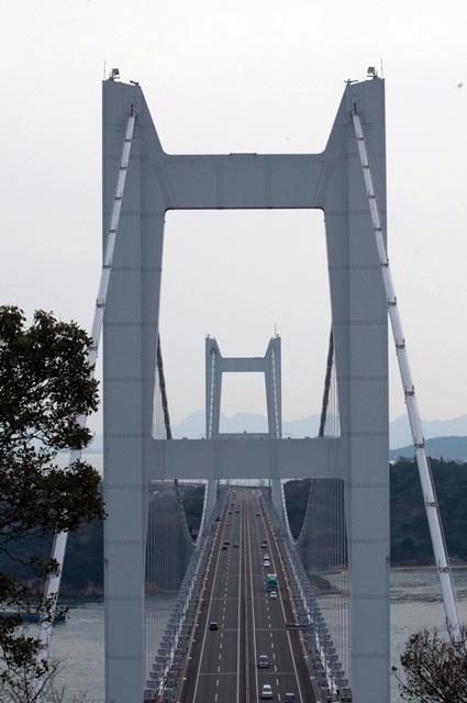 20110124-5.jpg
