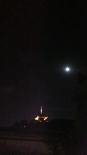 三渓園 月