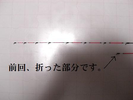 黒鯛9-1