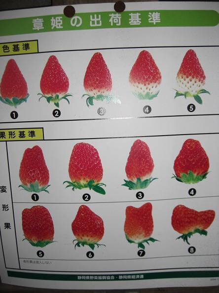 イチゴ8-2