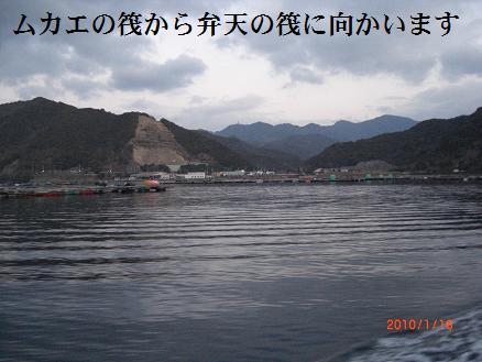 黒鯛10-2