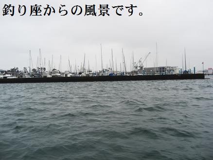 黒鯛13-4
