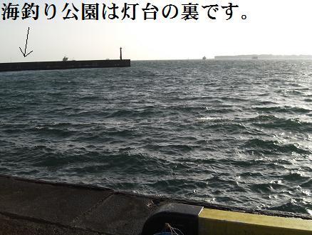 黒鯛14-1