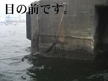黒鯛21-2