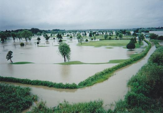 洪水1IMG_0020