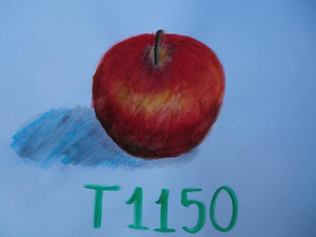 11.10.9絵画教室2日目 (42)