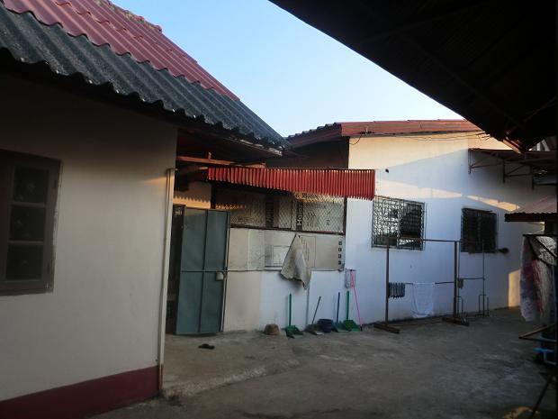 2 11.10.24アパートの椰子の木 (3)