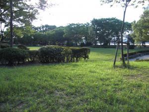 2010_0804_中央公園2