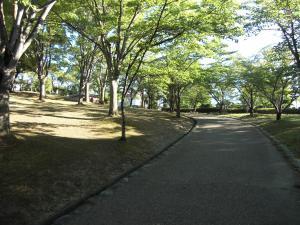2010_0804_中央公園5