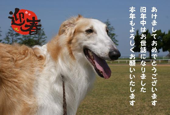 2010 カイザー 01