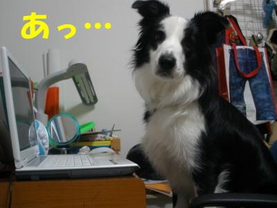 PC010068.jpg