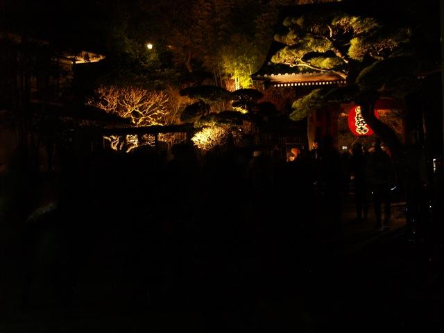 長谷紅葉ライトアップ20093