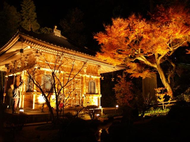 長谷紅葉ライトアップ20092