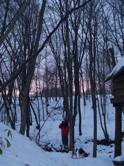 201001sweetgrass10.jpg