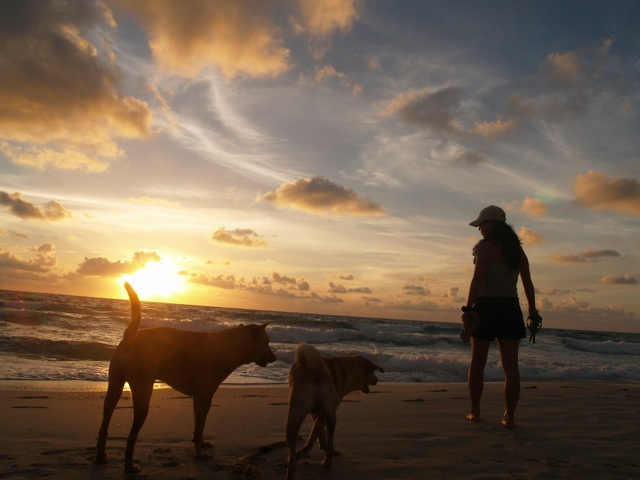 20100216サムイ島の朝1