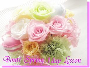 spring1dayLesson.jpg
