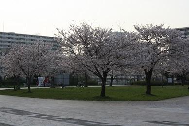 2010.04.06  (21)