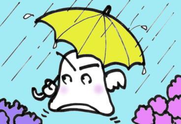 悲しき雨音