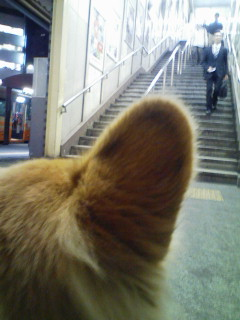 駅で待つ。
