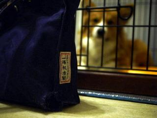 旧一澤帆布のバッグ。