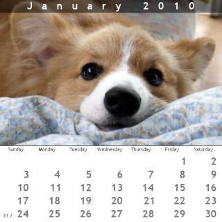 2010年1月のカレンダー。