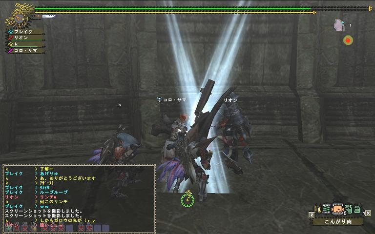 mhf_20100124_151157_070.jpg