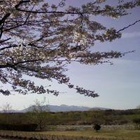 画像-0057_R