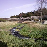 画像-0064_R